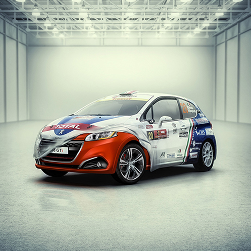 Peugeot 208 Rally – Paolo Cecchin